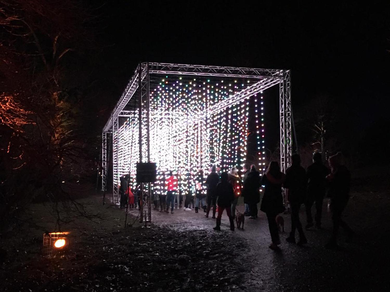Christmas at Bedgebury 2019